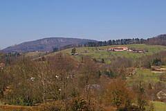Battert - Schafberg  von Seelach