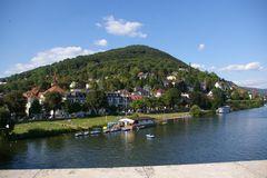 Neckarwiese - Neuenheim - Heiligenberg River Neckar - Neckar-Green - quarter Neuenheim Mount Heiligenberg