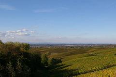 Steinbach - Sinzheim