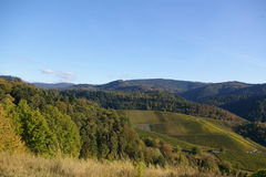 Büchelberg - Schwarzwald