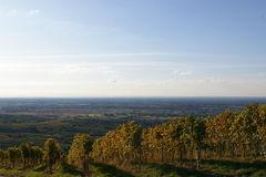 Rheinebene bei/near Neuweier