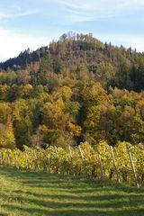Yburg Herbst / autumn