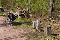 Grenze am Luchsfelsen Vosges du Nord / Pfälzerwald
