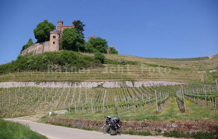 Schloß Ortenberg bei Offenburg