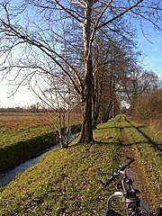 bei Steinbach - Herbst