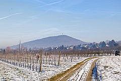 Steinbach - Fremersberg