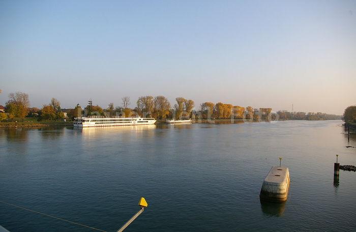 Rhein bei Kehl