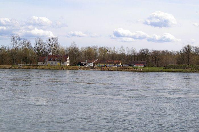 Rhein bei Plittersdorf alte Flussmeisterei