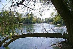 Bremengrund