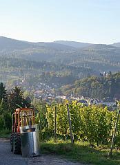 Lichtental - Badner Höhe