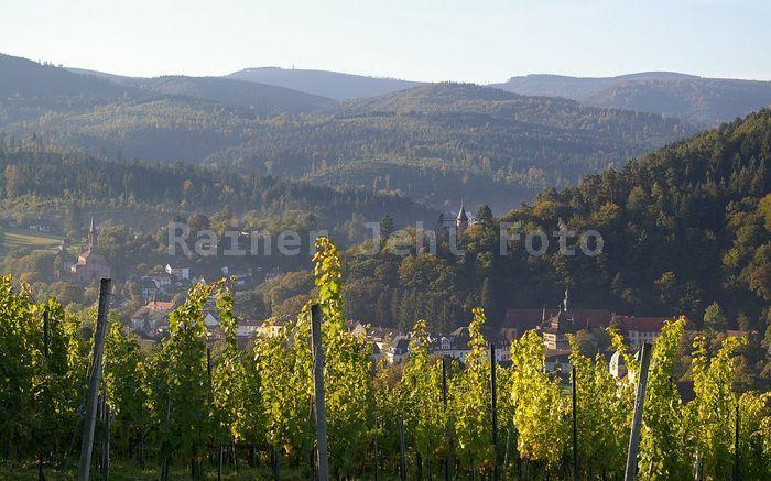 Lichtental - Badner Höhe vom Eckberg / Silberbuckel