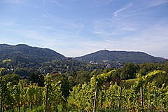 Waldeneck - Fremersberg - Quettig  vom Silberbuckel