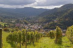 Lichtental - Geroldsau - Badner Höhe  vom Schafberg