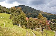 Hofgut Schafberg
