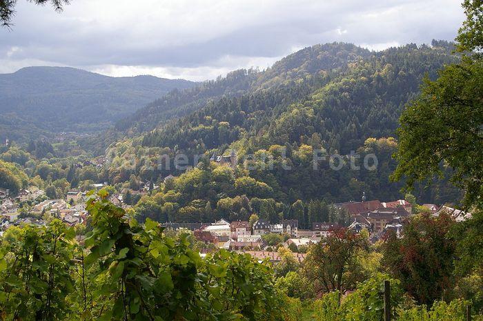 Lichtental vom Schafberg Kloster Lichtental
