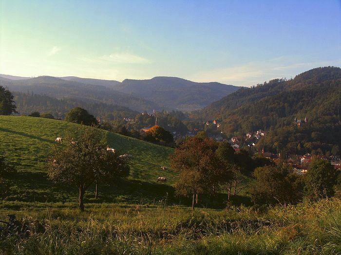 Schafberg Lichtental - Badner Höhe
