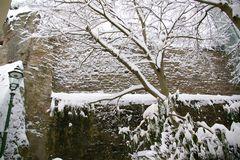 Florentinerberg - Winter